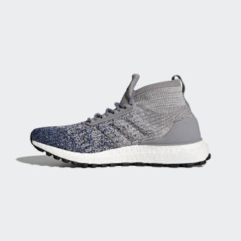 adidas Originals Ultra UltraBOOST Boost All Terrain (BB6128) grau