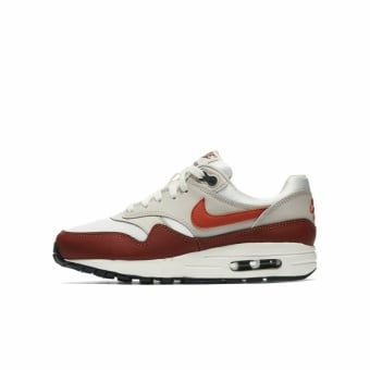 Nike Air Max 1 GS (807602-103) bunt