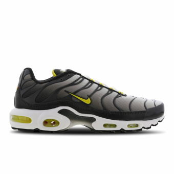 Nike Air Max Plus TN (CI2299-002) grau