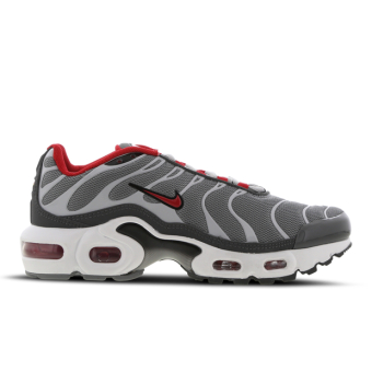 Nike Air Max Plus (CD0609-005) grau
