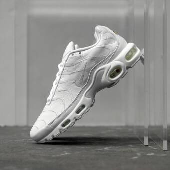 Nike Air Max Plus (AJ2029-100) weiss