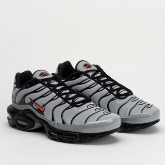 Nike Air Max Plus (DC1936-002) grau