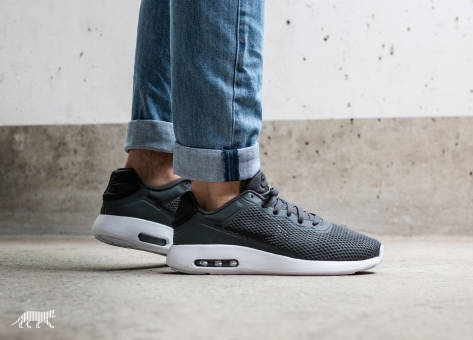 Nike Air Max Modern Essential (844874 013) grau