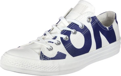 Converse Chuck Taylor All Star Wordmark Hi (159535C) weiss
