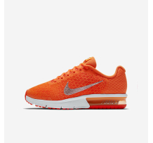 Nike Air Max Sequent 2 Sneaker (869993-800)